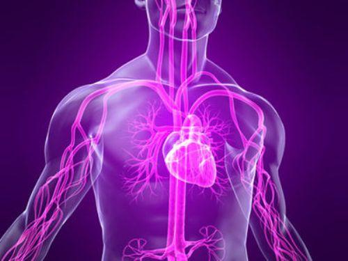 Вегето сосудистая дистония (ВСД): диагноз, симптомы, лечение, профилактика